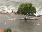 Deck do Pescador tem trecho liberado três meses após ressaca em Santos