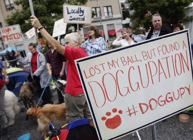 Animais foram levados por seus donos para o evento. (Foto: Shannon Stapleton/Reuters)