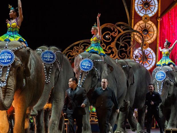 Elefantes participam de espetáculo do Ringling Bros. and Barnum & Bailey Circus, em Washington, no dia 29 de março de 2015 (Foto: AFP Photo/Andrew Caballero-Reynolds)