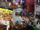 Aliança é tetracampeã do carnaval de Joaçaba e Herval d'Oeste, em SC