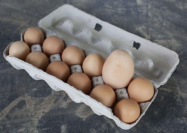 Em 2009, o avicultor canadense Mike McCannell teve uma surpresa ao recolher os ovos em seu galinheiro. Ele encontrou um ovo de 143 gramas, pesando mais do que o equivalente a três ovos graúdos (Foto: AP Photo/The Canadian Press, Pawel Dwulit)