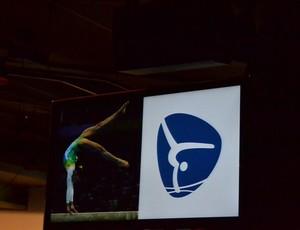 Evento pictogramas (Foto: Thierry Gozzer)