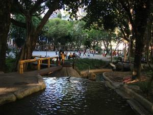 Foto Alessandro Andrade Juiz de Fora (Foto: Arquivo Pessoal/Alessandro Andrade)