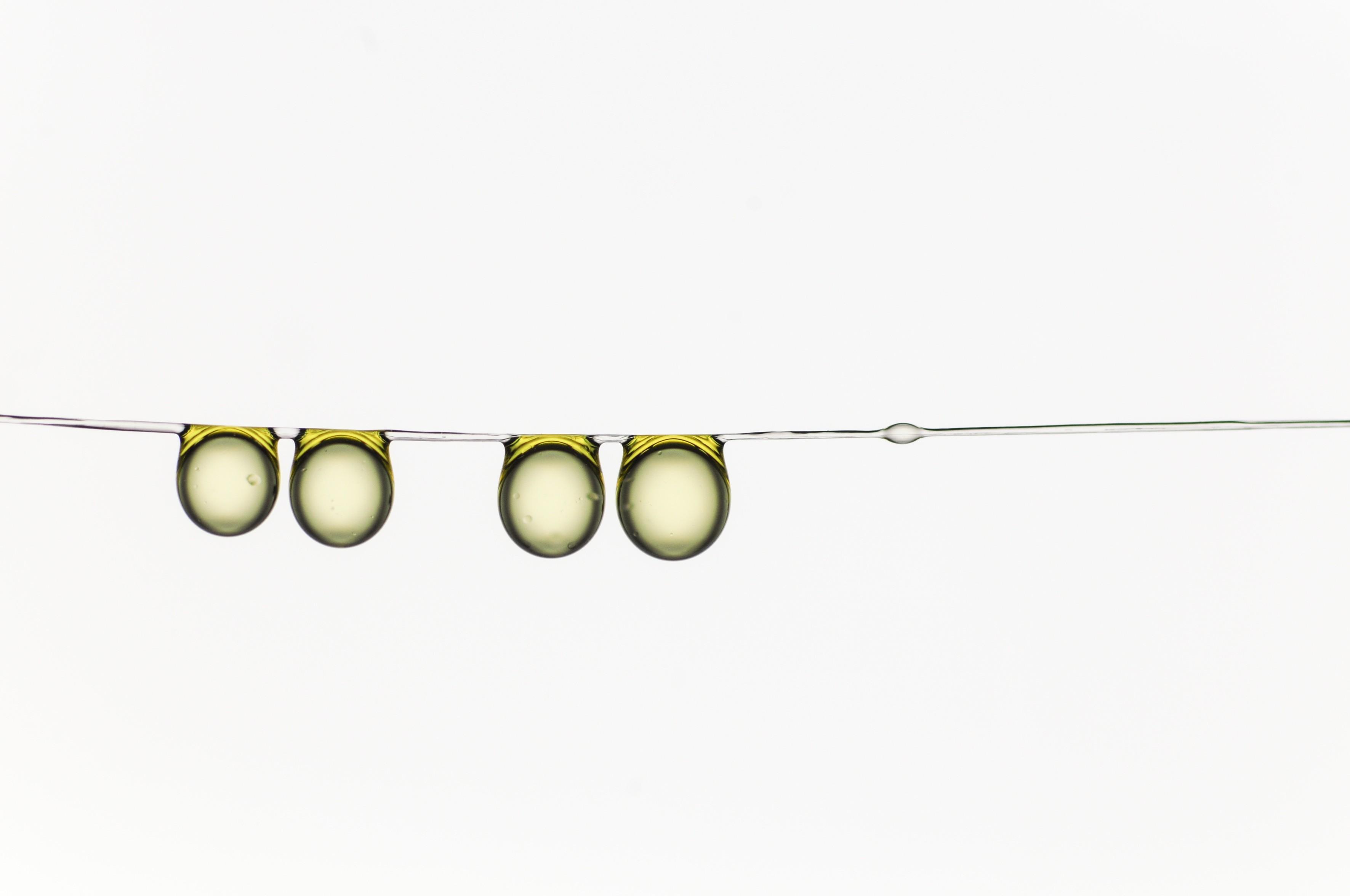 Azeite de oliva, por Hervé Elettro (Foto: Hervé Elettro / Divulgação)