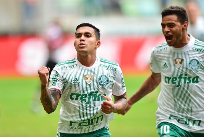 Dudu Cleiton Xavier Palmeiras x Santa Cruz (Foto: Marcos Ribolli)