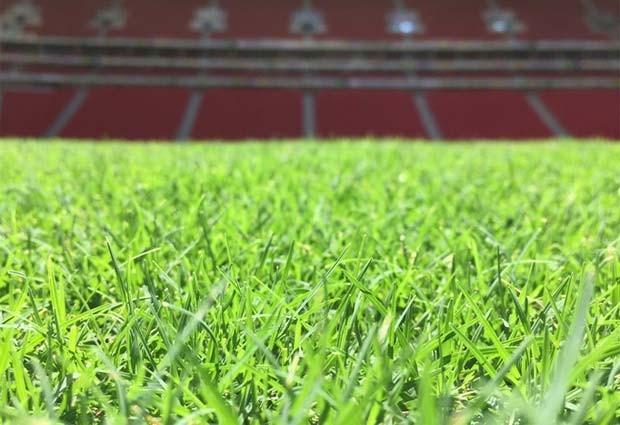Gramado do Estádio Nacional Mané Garrincha, em Brasília (Foto: Lucas Magalhães/Globoesporte.com)