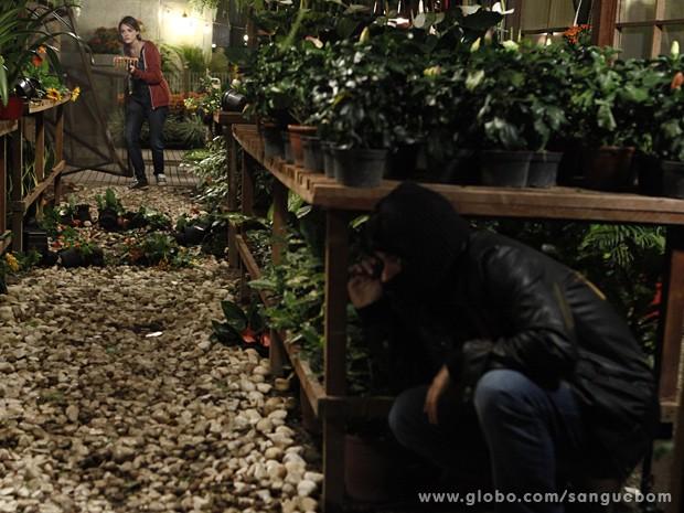 Fabinho invade floricultura e Giane aparece (Foto: Sangue Bom/TV Globo)