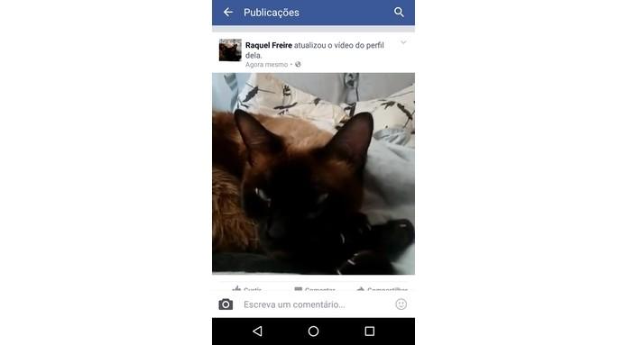 Vídeo de perfil carregado no Facebook (Foto: Reprodução/Raquel Freire)
