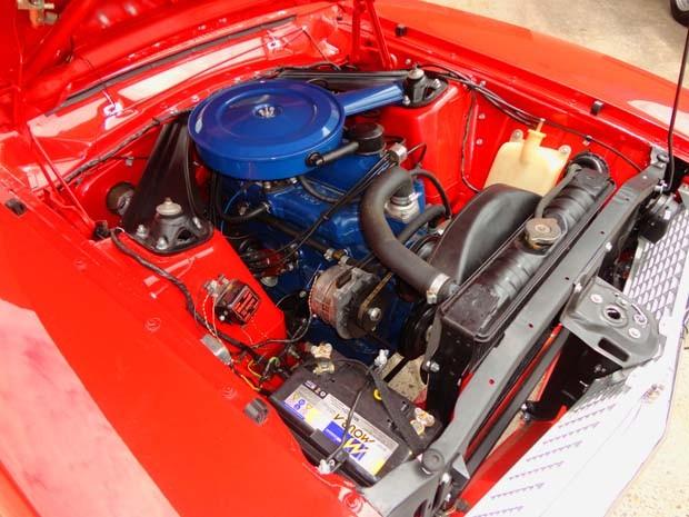 Motor do automóvel foi totalmente revitalizado (Foto: Ricardo Spiguel Cardoso / Cedida)