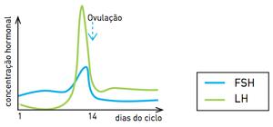 Gráfico B (Foto: Reprodução/UERJ)