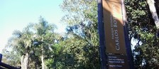 Programa visita o parque Carlos Botelho  (Giliardy Freitas / TV TEM)