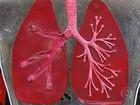 Cientistas dos EUA desenvolvem pequenos pulmões em provetas