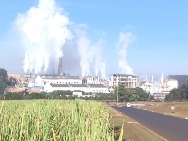Safra da cana-de-açúcar inicia em meados de abril na região Centro-Sul (Foto: Reprodução/EPTV)