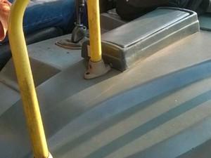 Caixa foi acoplada ao lado do motorista, que faz o trabalho do cobrador  (Foto: Arquivo pessoal)