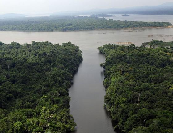 Parque Nacional Serra do Pardo, no Pará, Amazônia Brasileira (Foto: Adriano Gambarini/WWF)