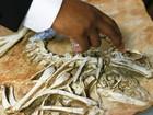 EUA devolvem para a Mongólia esqueletos de dinossauros roubados