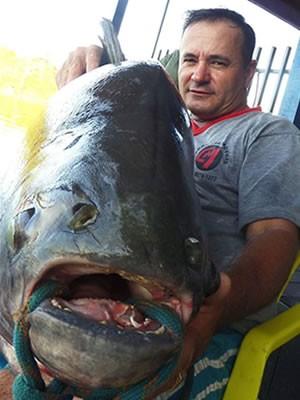 Em MT, pescador fisga peixe com mais de 38 kg no Rio Teles Pires Peixe38kg