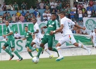 Palmeiras x Sampaio Correa (Foto: Tião Martins/PMSJC)