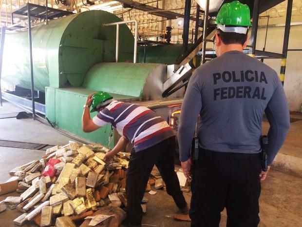 Foram queimados maconha, crack, cocaína e pasta base (Foto: PF/Divulgação)