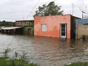 Cheia do Rio Quaraí (Foto: Reprodução/RBS TV)