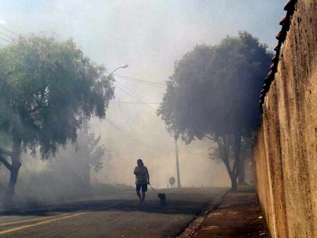 Fumaça deixou moradores do Jardim Novo Horizonte assustados (Foto: Nicole Caroline Abreu dos Santos)