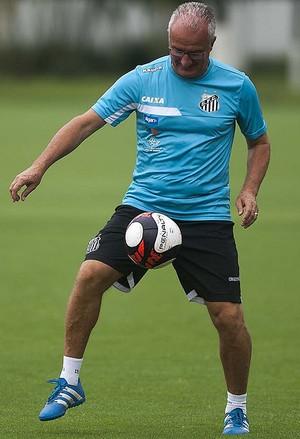 Dorival Junior Santos (Foto: Ivan Storti/Santos FC)
