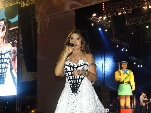 Elba Ramalho (Foto: Jaqueline Almeida/ G1)