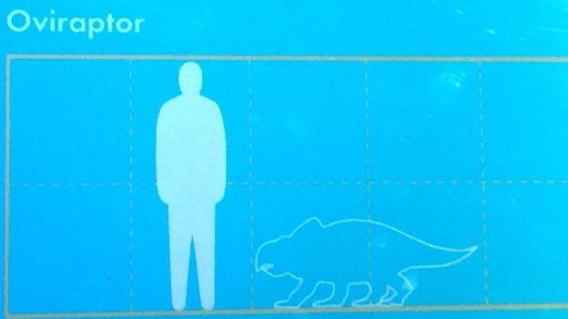 A placa com o desenho do Oviráptor (Foto: Arquivo pessoal/BBC)
