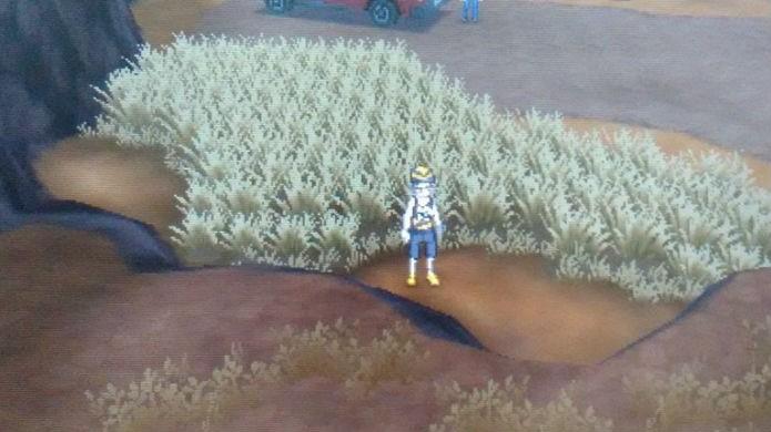 Pokémon Sun e Moon: Procure pela Sun Stone neste gramado (Foto: Reprodução / Thomas Schulze)