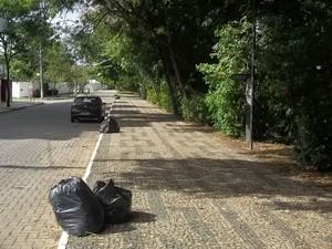Moradores deixam o lixo no calçadão para que seja recolhido (Foto: Diego Souza/G1)