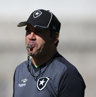 Ricardo Gomes Botafogo (Foto: Satiro Sodré / SSpress / Botafogo)