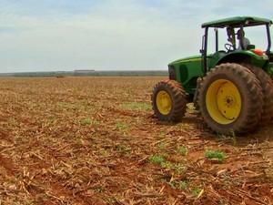 Trator na lavoura de soja em Mato Grosso (Foto: Reprodução/TVCA)