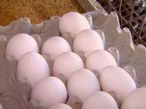 Para produzir um ovo são gastos 200 litros de água (Foto: Reginaldo dos Santos / EPTV)