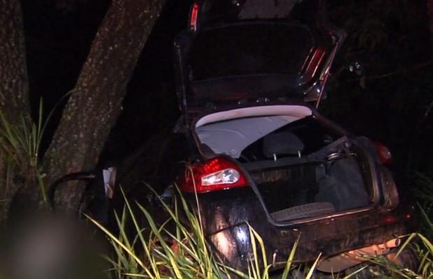 Carro fica destruído ao bater contra árvore às margens da GO-462, em Goiás (Foto: Reprodução/ TV Anhanguera)