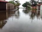 Rua em Itanhaém, SP, vira espécie de lago durante os dias de chuva