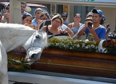 Resultado de imagem para cavalo chora no enterro do dono