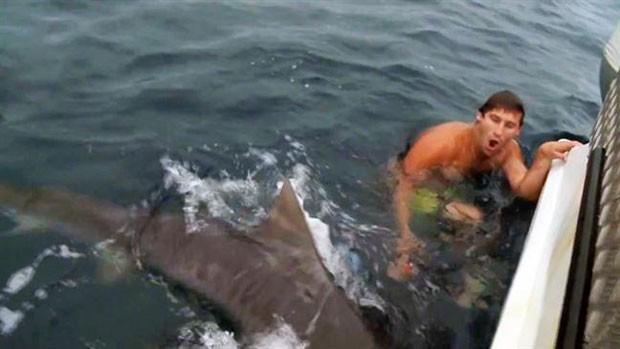 Shaun Harrington, de 27 anos, escapou por pouco de ataque de tubarão-tigre (Foto: Reprodução/Facebook/Meanwhile in Australia)
