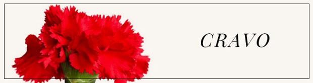 O Antigo Significado Das Flores Casa Vogue Fotografia