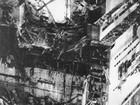 Andorinhas de Chernobyl resistem bem à radiação, afirma pesquisa