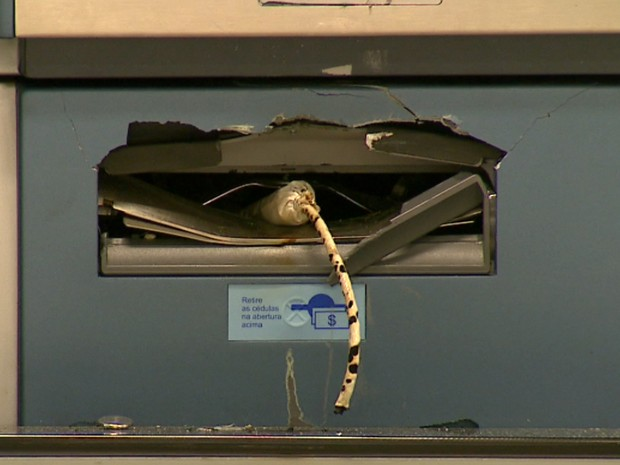 Dinamite usada para tentar explodir caixa em Santa Rita do Passa Quatro (Foto: Felipe Lazzarotto/EPTV)