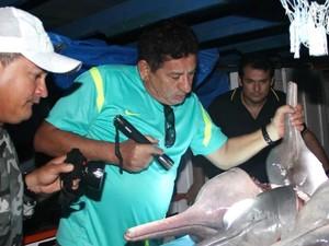 Botos esquartejados foram encontrados em barco no município de Tapauá (Foto: Edmar Barros /VC NO G1)