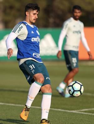 Thiago Martins Palmeiras