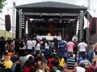 Veja fotos do Festival Summer Beats no Hopi Hari em Vinhedo