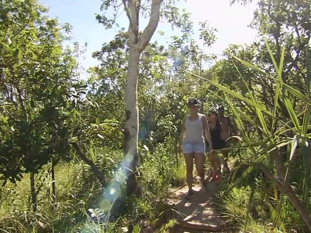 Grupo faz 'vaquinha' para manter Parque da Chapada dos Veadeiros em Goiás (Foto: Reprodução/TV Anhanguera)