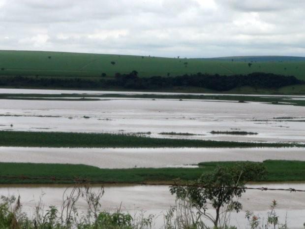 Tanquan, Distrito  de Piracicaba conhecido como pantanal paulistano (Foto: Nikolas Capp/ G1)