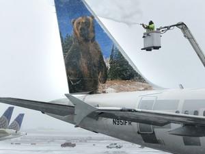EUA nevasca avião congelado (Foto: Seth Wenig/AP Photo)