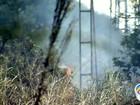 Tempo seco aumenta número de queimadas na região