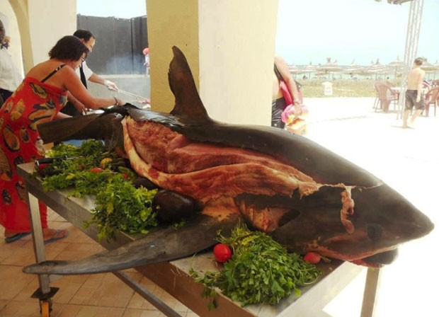 Resort na Tunísia chamou atenção por servir tubarão inteiro para os hóspedes (Foto: Reprodução/Imgur)