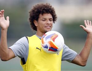 Willan Arão Botafogo (Foto: Vitor Silva / SSPress / Botafogo)