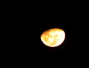 Lua Corutipe x CSE (Foto: Reprodução/TV Gazeta)